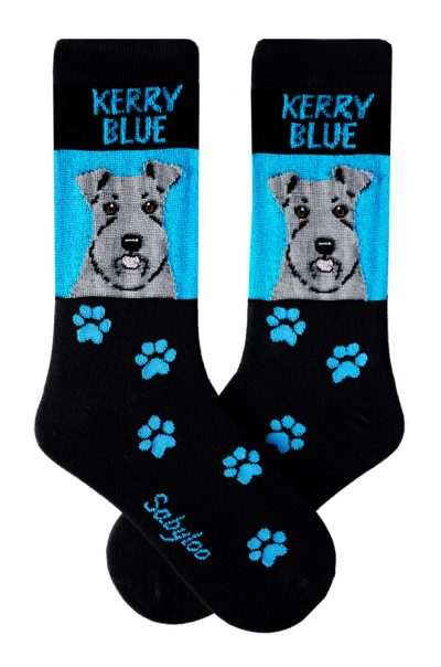 Kerry Blue Terrier Socks on Blue Background