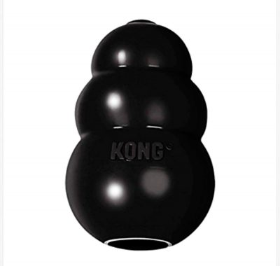 Kong Indestructible Dog Toy