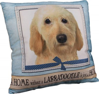 Labradoodle Pillow 16×16 Polyester Yellow 1
