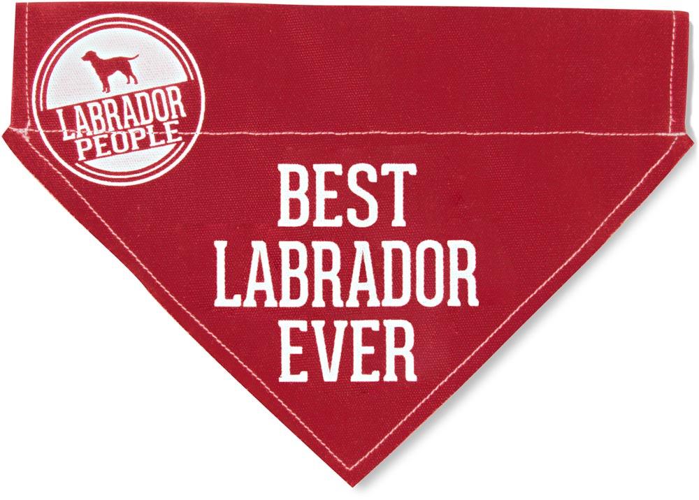 Best Labrador Ever Bandana