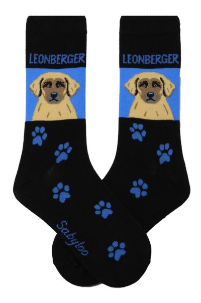 Leonberger Socks on Blue Background