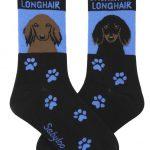 longhair-dachshund-red-blk-blue