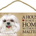 Maltese Wood Dog Sign Wall Plaque Photo Display Puppy Cut A House Is Not A + Bonus Coaster 1