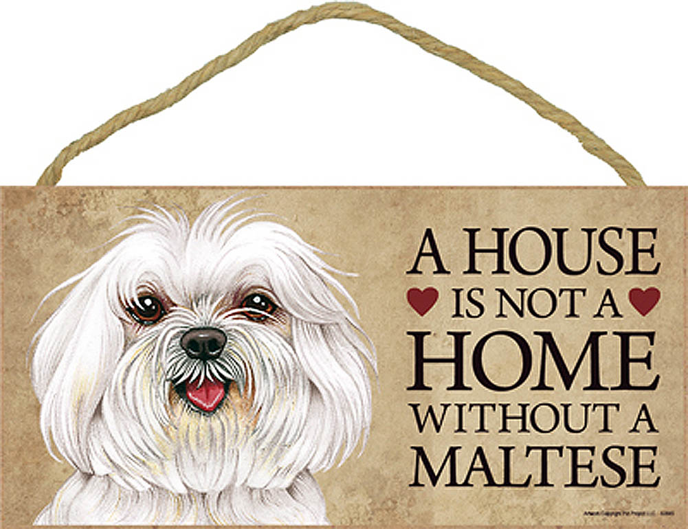 Maltese Wood Dog Sign Wall Plaque Photo Display Puppy Cut A House Is Not A + Bonus Coaster
