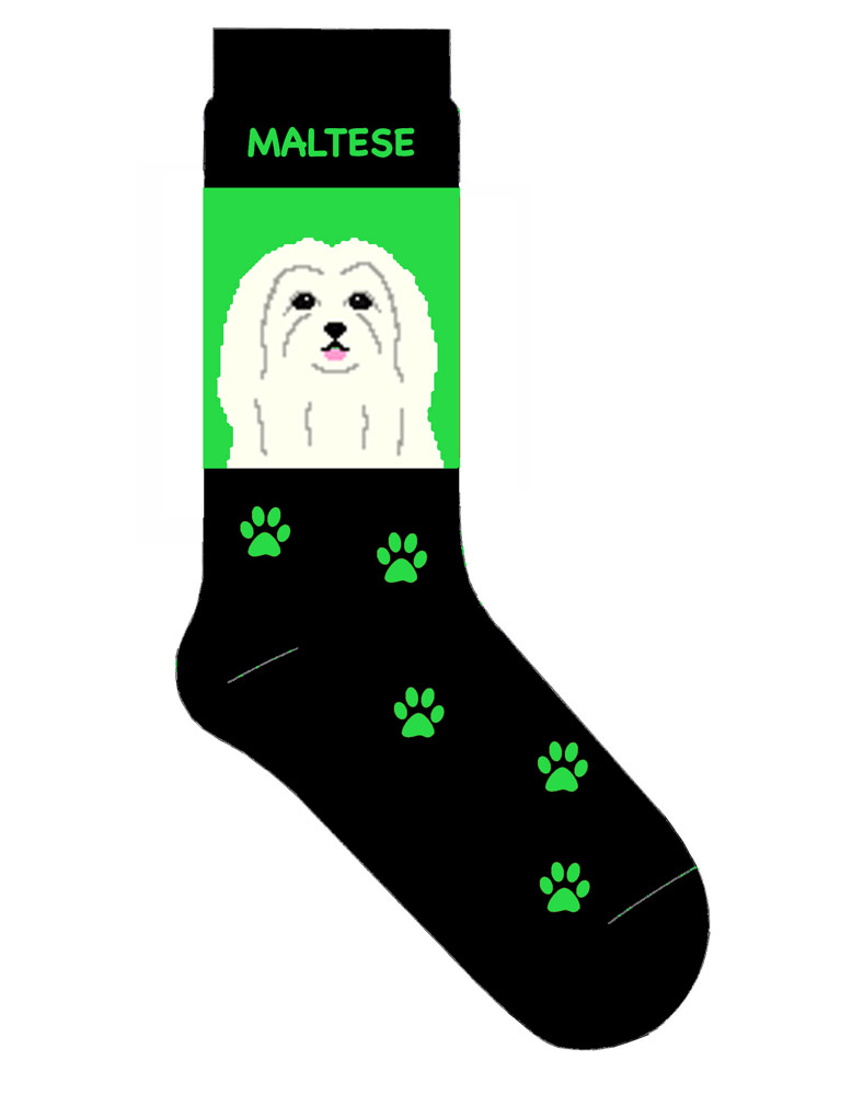 maltese-socks-green