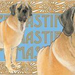 mastiff-mug-2