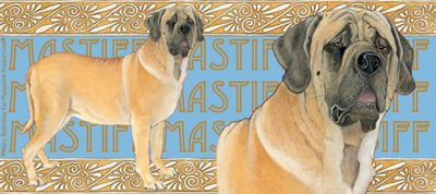 Mastiff Ceramic Mug Illustration