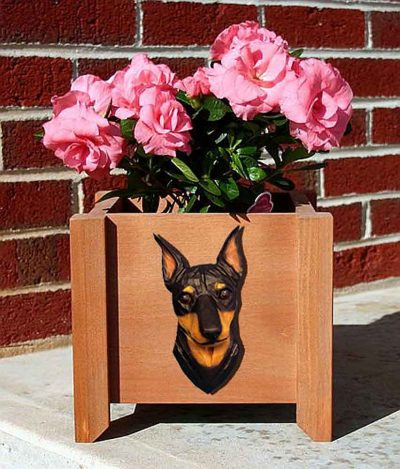 Mini Pinscher Planter Flower Pot Black Tan 1
