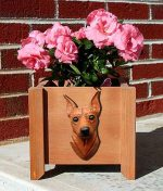 Mini Pinscher Planter Flower Pot Red