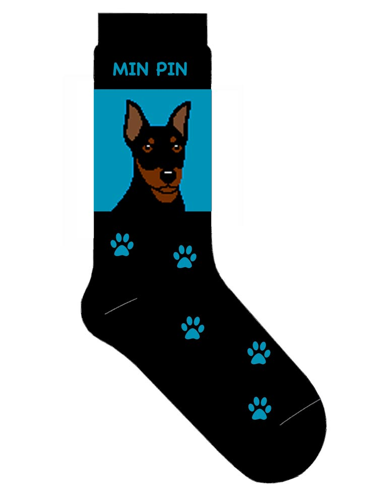 mini-pinscher-socks-blue