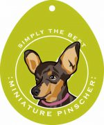 Miniature Pinscher Sticker 4x4""