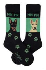 Miniature-Pinscher Black/Tan & Red Socks - Green and Black in Color
