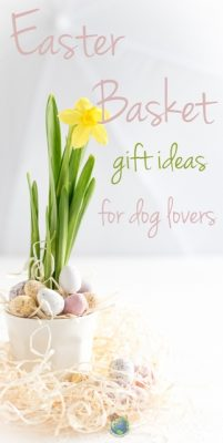 Easter Basket Ideas for Dog Lovers