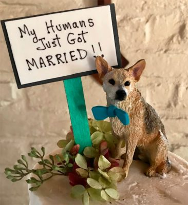 My Human's Just Got Married