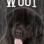 Newfoundland Sign – You Had me at WOOF 5×10 1