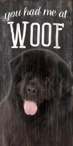 Newfoundland Sign - You Had me at WOOF 5x10