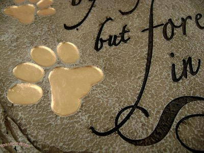 No Longer By My Side But Forever in My Heart Outdoor Stepping Stone - Zoom In of Detail