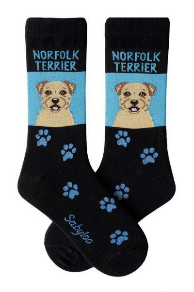 Norfolk Terrier Socks on Blue Background