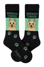 Norwich Terrier Socks on Green Background