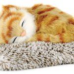orange-tabby-cat-perfect-petzzz-mini