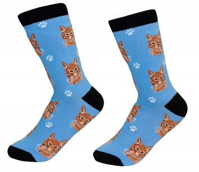 orange-tabby-cat-socks-es