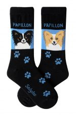 Papillon Black & Brown Socks - Blue and Black in Color
