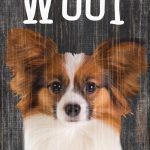Papillon Sign – You Had me at WOOF 5×10 1