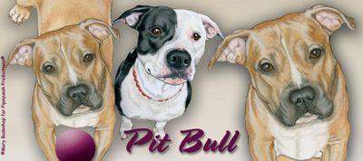 pitbull-fawn-mug-2