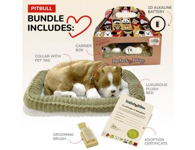 Included with Your Pitbull Perfect Petzzz Purchase