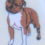 pitbull-scarf-close-up