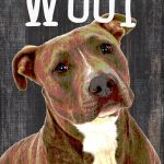 Pitbull Sign – You Had me at WOOF 5×10 1