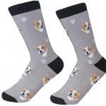 pitbull-socks-fawn-es