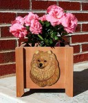 Pomeranian Planter Flower Pot Orange