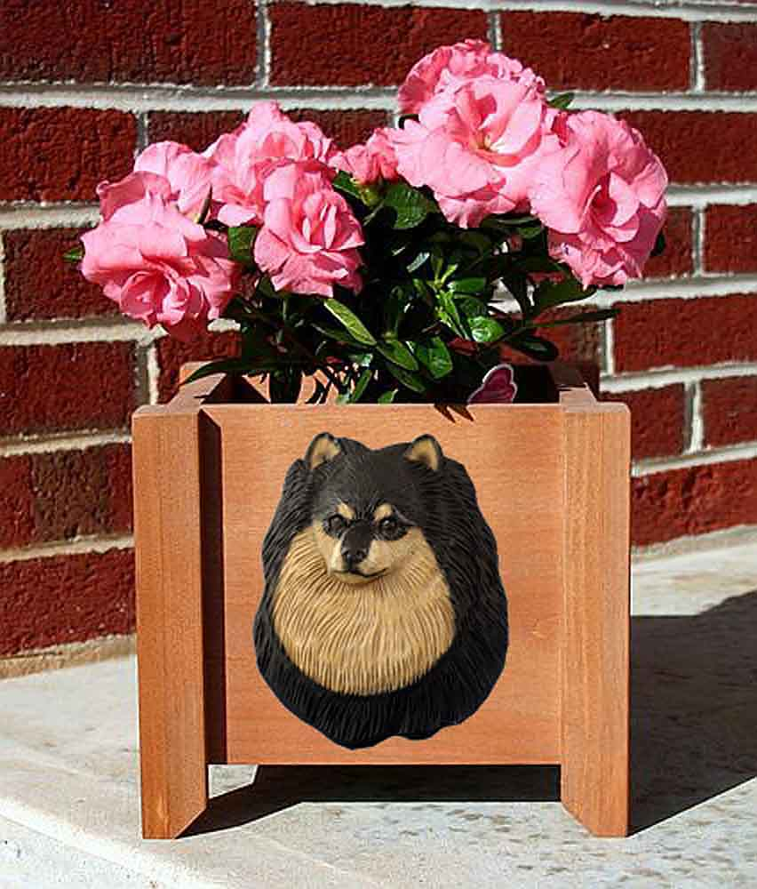 Pomeranian Planter Flower Pot Black Tan