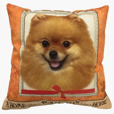 Pomeranian Pillow 16×16 Polyester 1