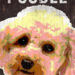 Poodle Sign – I Love My 5×10 1