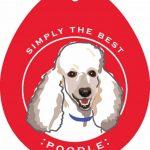Poodle Sticker 4×4″ White 1