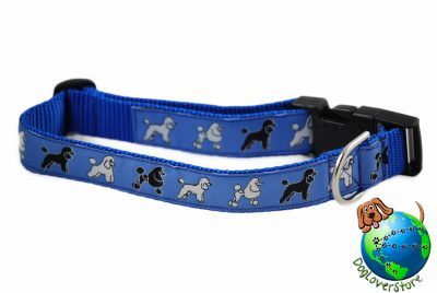 Poodle Dog Breed Adjustable Nylon Collar Large 12-20″ Blue 1