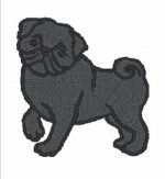 Pug Iron on Patch Black