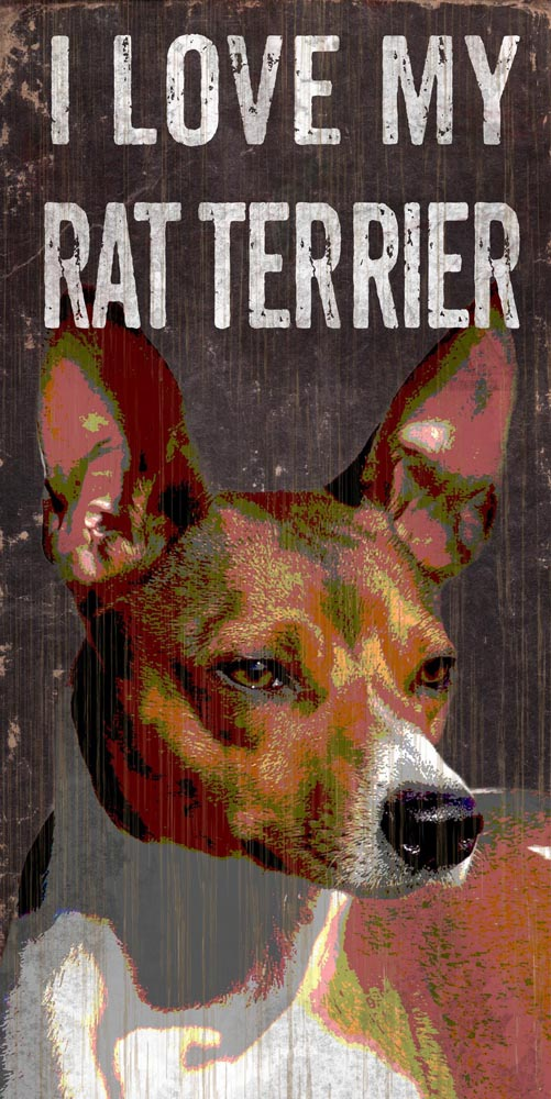 Rat Terrier Sign - I Love My 5x10