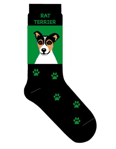 rat-terrier-socks-green