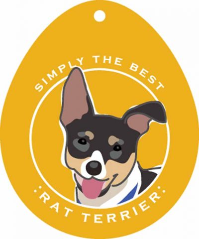 Rat Terrier Sticker 4×4″ 1