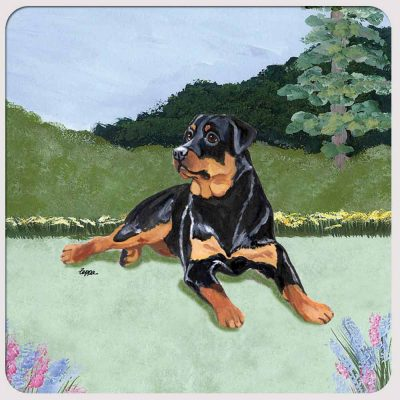 Rottweiler Yard Scene Coasters Set of 4