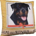 Rottweiler Pillow 16×16 Polyester 1
