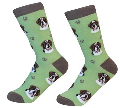saint-bernard-socks-es