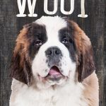 Saint Bernard Sign – You Had me at WOOF 5×10 1