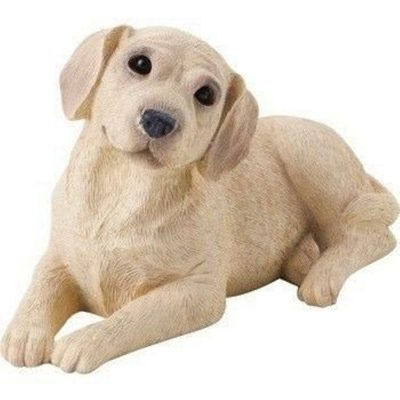 Yellow Lab Laying Sandicast