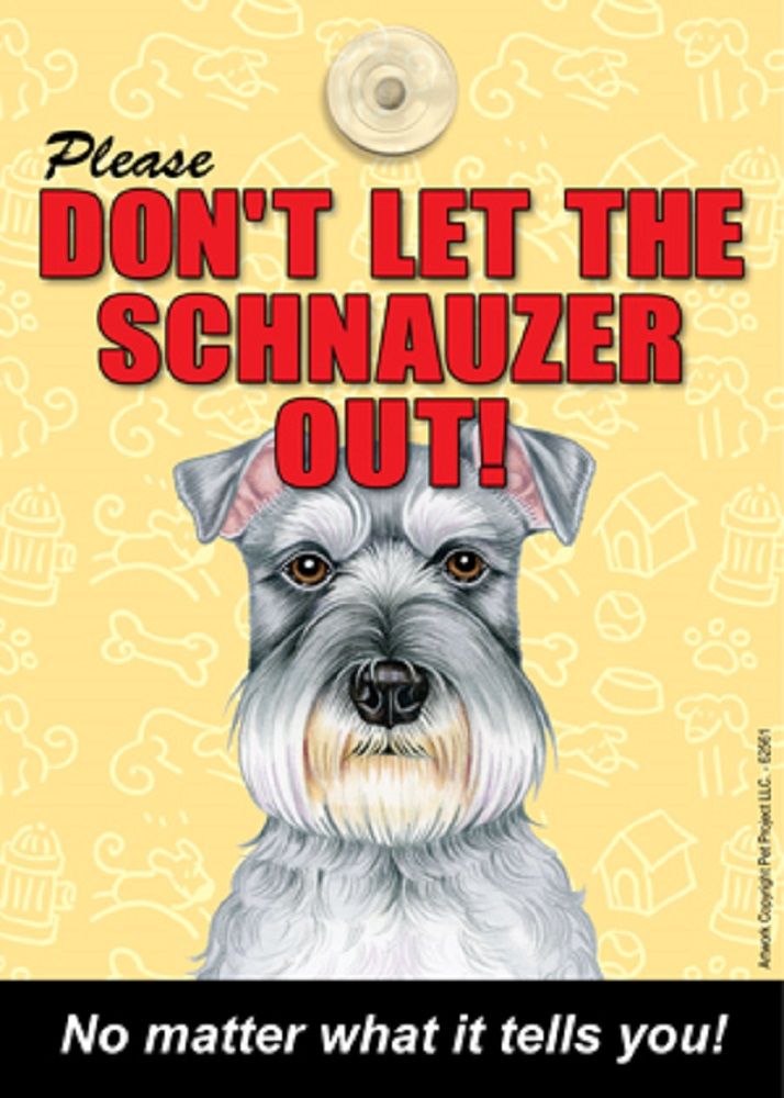 Schnauzer Don't Let the