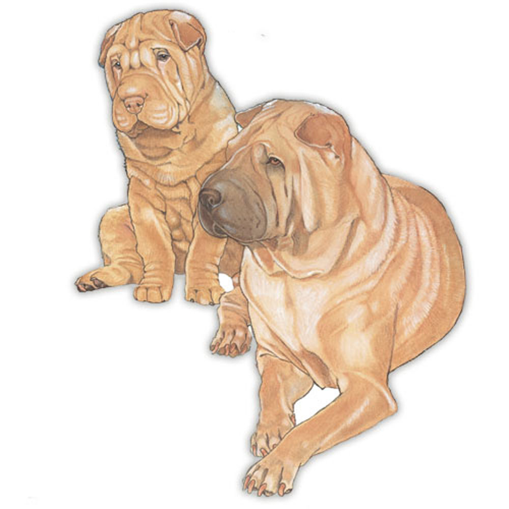 Shar Pei Wooden Magnet Brown
