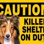 sheltie-caution-sign